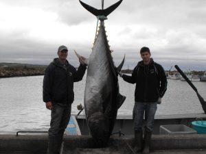 Rankin Tuna Charters - Tuna