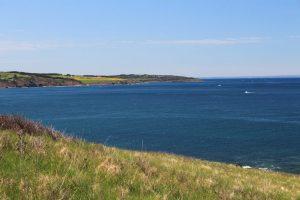 Rankin Tuna Charters - Ocean